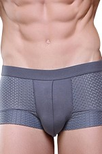 Irresistible U Style Pouch Breathable Boxer Soft Underwear Trunks