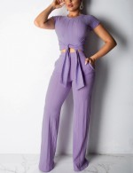 Attactive Purple Crew Collar Two Pieces Outfits Ankle Length Feminine Fashion