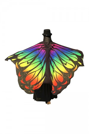 Colorful Iridescence Butterfly Shape Hooded Chiffon Cloak