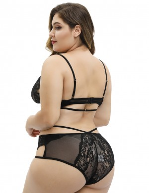 Black Sheer Mesh Embroidery Queen Size Panty Bra Set