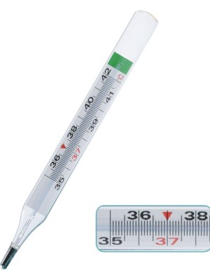 Classic Mercury-Free Thermometer Large Scale