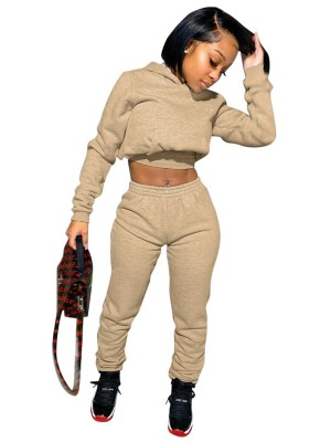 Brown Elastic Waistband Hoodie 2-Piece Outfits Ladies Elegance
