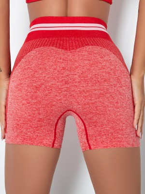 Pink Stripe Colorblock Biker Shorts Seamless Ladies Activewear