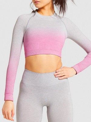 Pink Gradient Crop Top High Waist Yoga Legging Close-Fitting