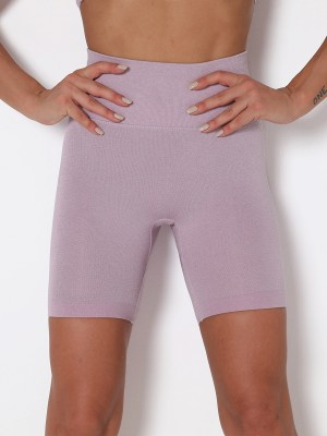 Light Purple Seamless Wide Waistband Yoga Shorts Elastic Material