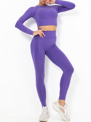 Purple Cropped Raglan Sleeve Seamless Sports Suit High Elasticity