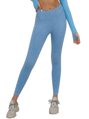 Luscious Light Blue Seamless Yoga Leggings Solid Color For Streetshots