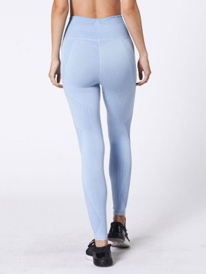 Exclusive Blue Wide Waistband Yoga Legging Seamless For Ladies
