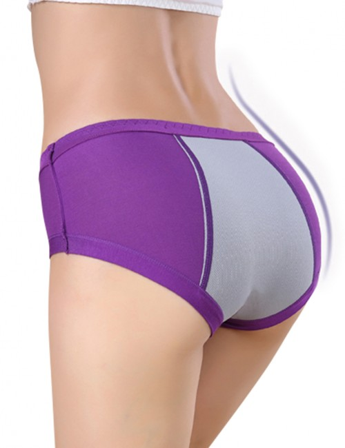 Attractive Purple Plus Mid Rise Bamboo Panties Comfort