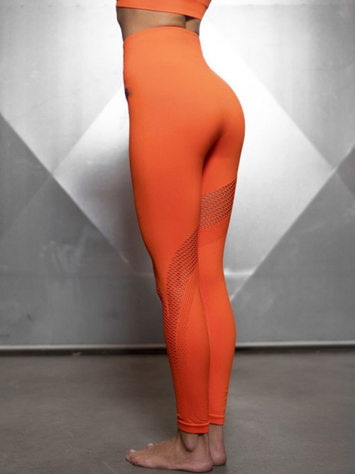 Cutie Orange Hollow Out Seamless Workout Leggings Fashion Trend