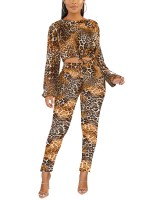 Bewitching Brown Crew Neck Crop Top And Leopard Pants Comfort Fashion