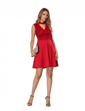 Graceful Red A-Line Lace Mini Skater Dress Sleeveless