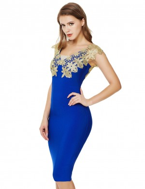 Body Hugging Sapphire Blue Applique V Collar Open Back Zip Bandage Dress