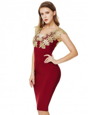 Feminine Curve Zipper Backless Jujube Applique Bandage Dress V Neck Leisure