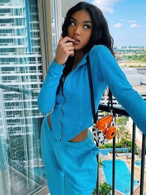 Blue Hooded Neck Zip Top And High Waist Pants For Strolling