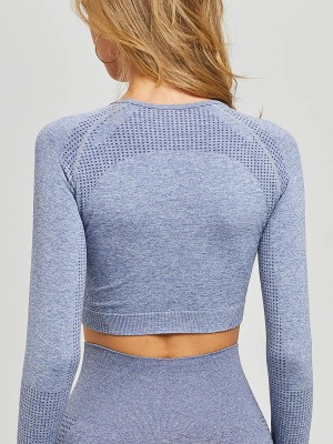 Royal Blue Sports Top Long Sleeve Crew Neck Female Elegance