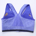 Charming Purple Zipper Front Fixed Straps Sports Bra