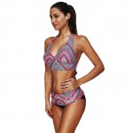 Gorgeous Two Piece Plus Bathing Suits Tribal Pattern