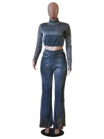 Extreme Silver High Neck Top Wide Leg Pants Mesh Feminine Charm