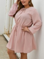 Summary Pink Lace-Up Big Size Dress Solid Color For Streetshots