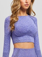Close-Fitting Purple Raglan Sleeve Sports Cropped Top Running