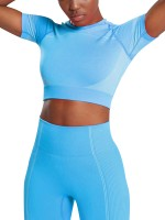 Comfortable Blue Short-Sleeve Seamless Crop Sweat Suit Outfit