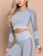 Fashionable Light Blue Long Sleeve Crew Neck Sport Crop Top For Female