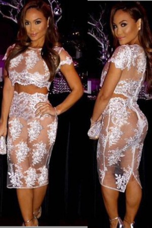 Transparent Lace Pattern Sexy Bodycon Dress