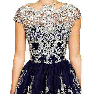 Premium Embroidery Metallic Lace Formal Skater Dress