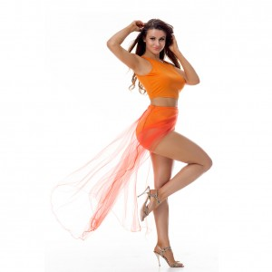 Vibrant Crop Top Slit Orange Two Piece Dress Mesh Cover