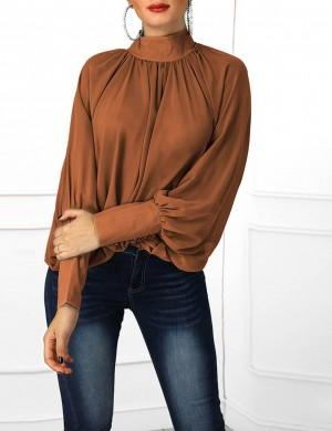 Seductive Brown High Collar Chiffon Blouse Batwing Sleeves Online Fashion
