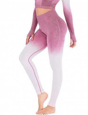 Incredible Seamless Gradient High Waist Yoga Legging Sports Series