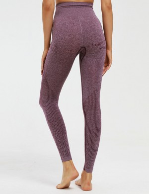 Enticing Seamless Wine Red Knitted Lift Butt Yoga Legging Workout Apparel