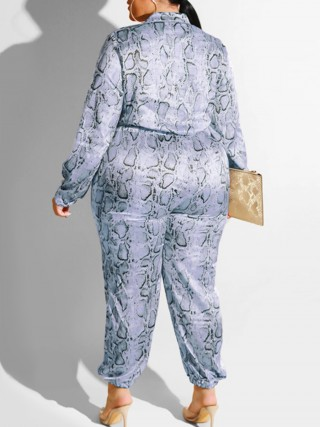 Individualistic Blue Jumpsuit Long Sleeve High Waist Splendid Look