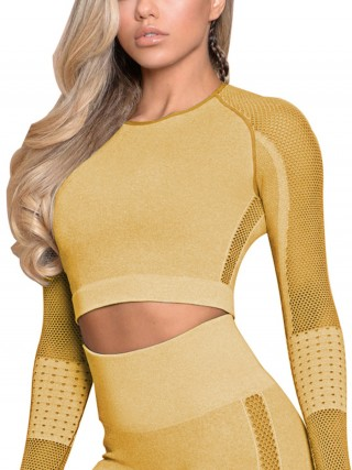 Exotic Earthy Yellow Long Sleeve Sports Crop Top Round Neck Sensual Curves