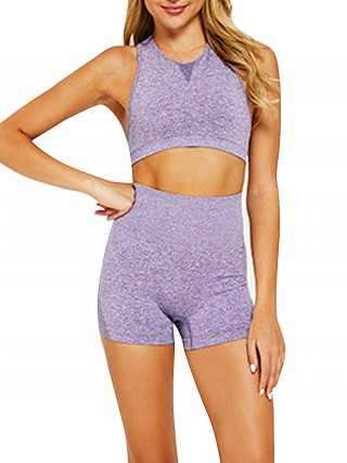 Purple Seamless Yoga Top And High Waist Shorts Sensual Silhouette