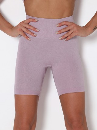 Light Purple Seamless Wide Waistband Yoga Shorts Outfit