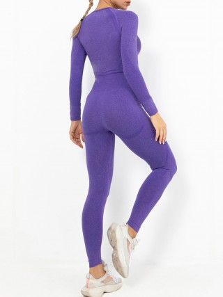Purple Cropped Raglan Sleeve Seamless Sports Suit Feminine Curve