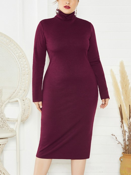 Effective Wine Red Big Size Fashion Kintting High Collar Dresses For Strolling
