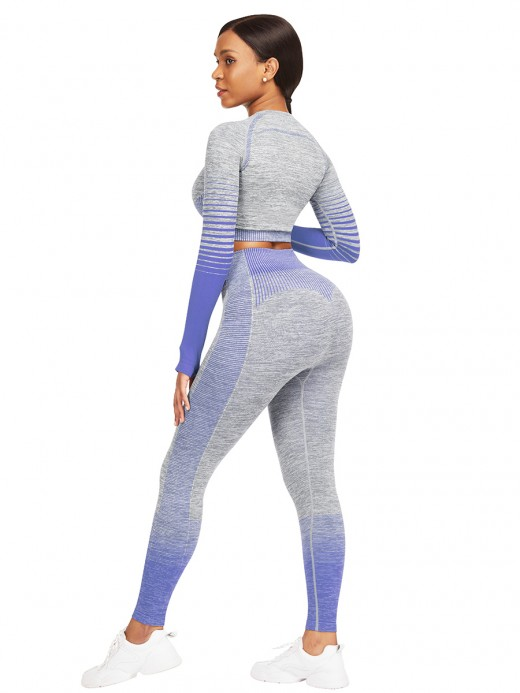 Ultra Hot Royal Blue Full Sleeve Top Ankle Length Pants Elasticity
